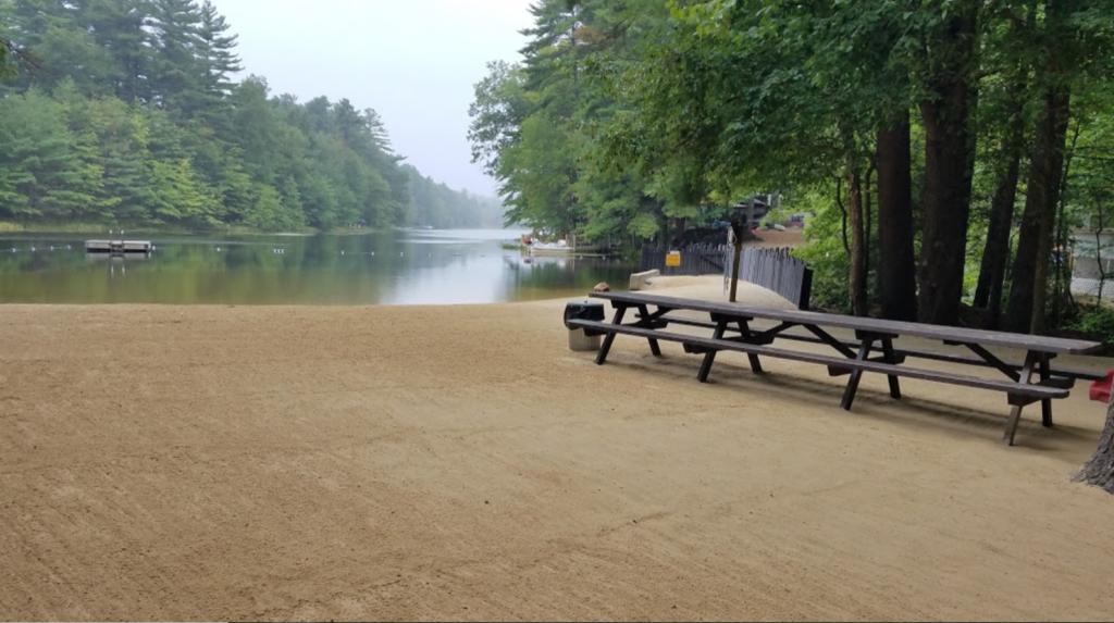 Beach and Lake